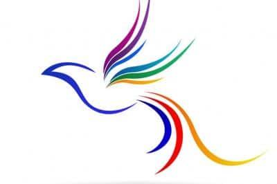 Google Colibri ou Hummingbird :quel impact ?