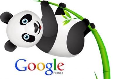 Google Panda désormais au coeur du système